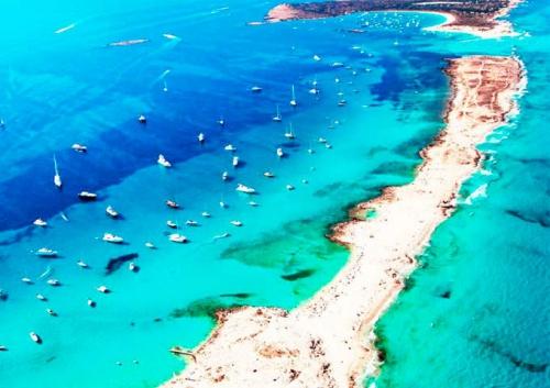Illetes y Es Palmador para navegar en Ibiza y Formentera