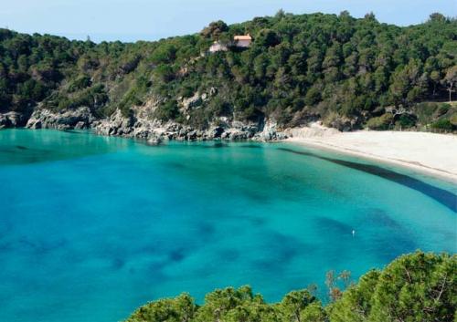 Playa de Fetovaia en la Isla de Elba