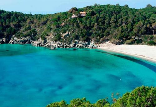 Navegar en Italia en la Playa de Fetovaia en Elba
